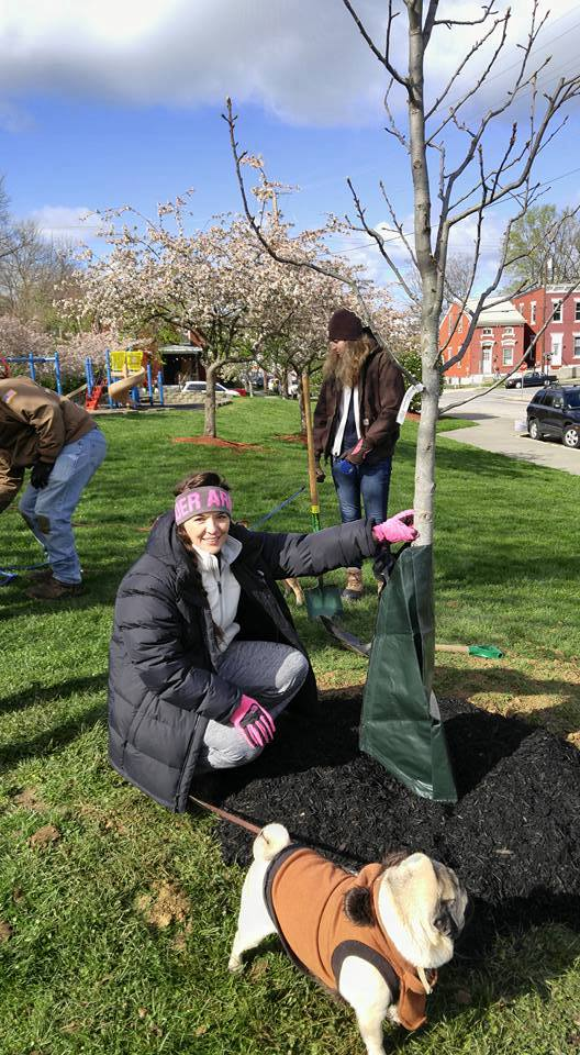 Lawrence & Associates Teamed Up With The Newport Parks Renaissance Commission To Plant Trees In Newport